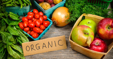 ORGANIC PRODUCTS: BENEFITS OF CHOOSING THE TRADITIONAL PATH